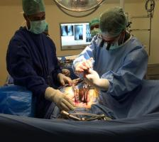 Minimal Invasive Spine Surgery